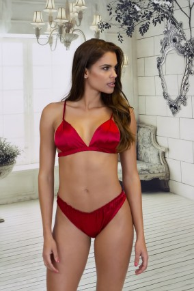 Red satin lingerie set